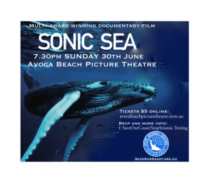 sonic sea_avoca beach