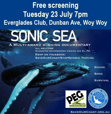 woy woy sonic sea screening
